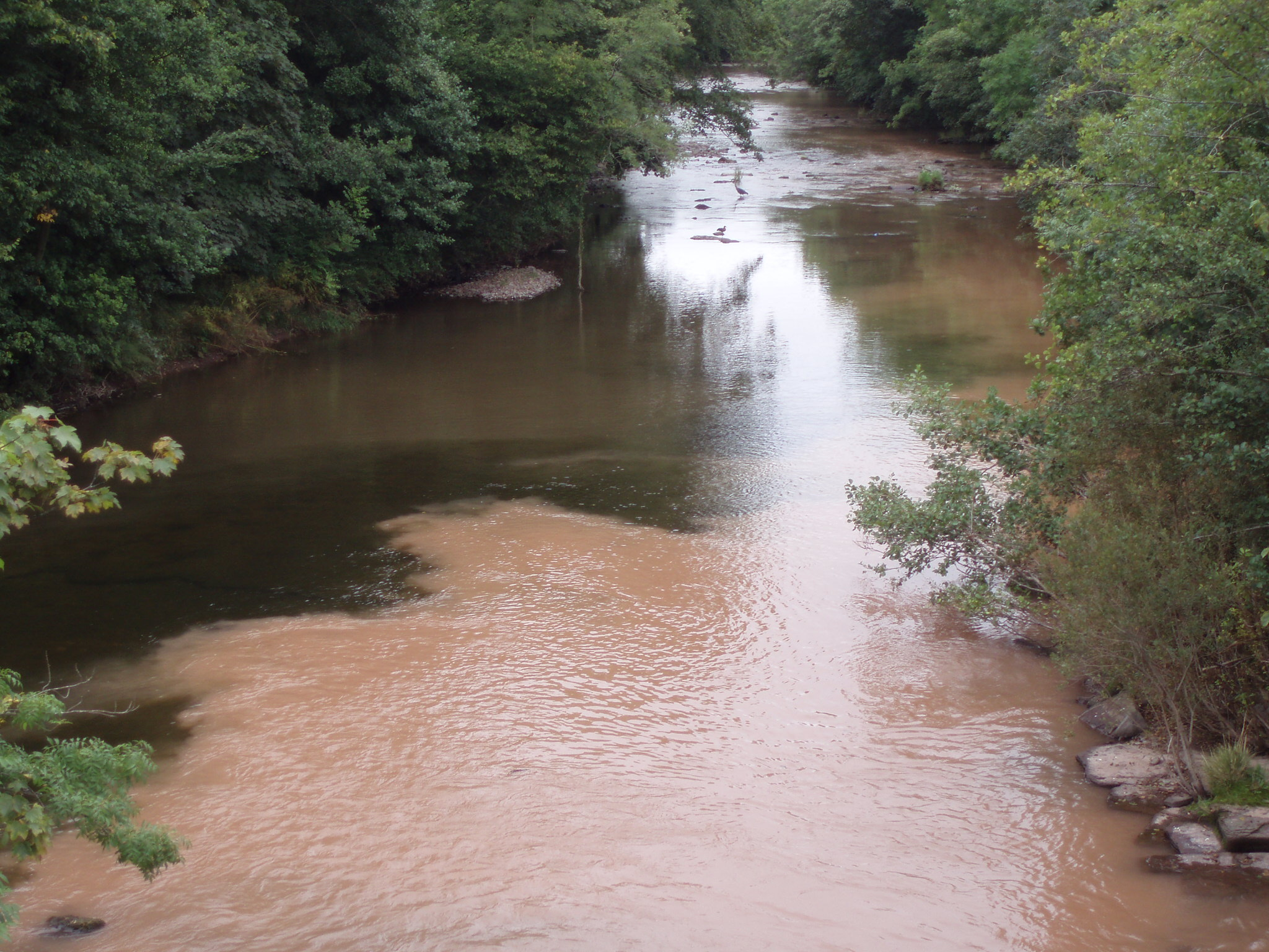 River pollution in a National Park